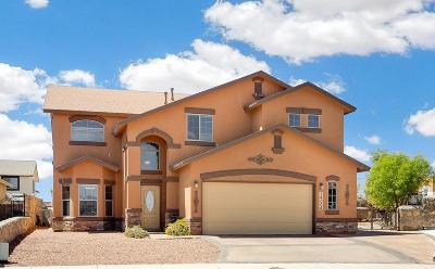 El Paso TX Single Family Home For Sale: $225,000