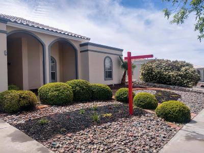 El Paso Single Family Home For Sale: 6804 Echo Cliffs Drive