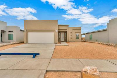 Horizon City Single Family Home For Sale: 401 Halstead Drive