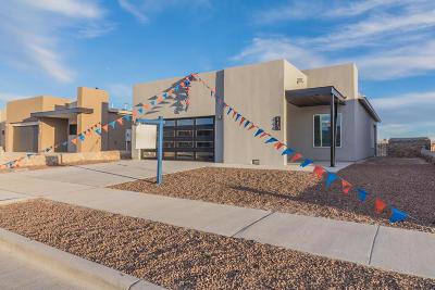 Horizon City Single Family Home For Sale: 425 Halstead Drive