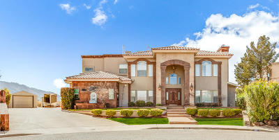 El Paso Single Family Home Active With Contingency: 1000 Star Ridge