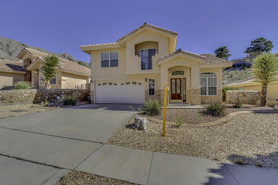 El Paso Single Family Home For Sale: 5620 Burning Tree Drive