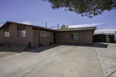 El Paso Single Family Home For Sale: 3217 Killarney Street