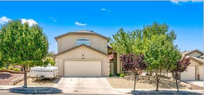 El Paso Single Family Home For Sale: 6952 Swede Johnsen Drive