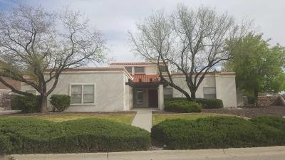 El Paso Single Family Home For Sale: 6246 Camino Alegre Drive