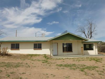 Las Cruces Single Family Home For Sale: 215 Squirrel Road
