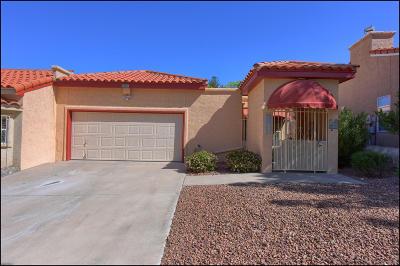 El Paso Condo/Townhouse For Sale: 213 Alto Mesa Drive #B