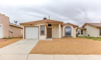 El Paso Rental For Rent: 7329 Mesquite Flor Drive