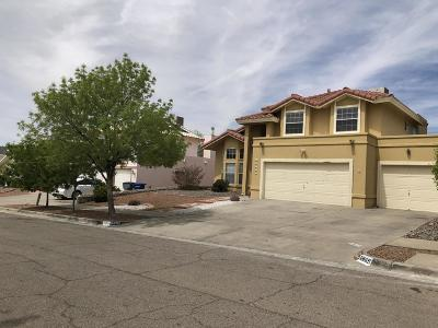 El Paso Single Family Home For Sale: 6809 Echo Cliffs Drive