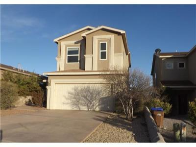 Las Cruces Single Family Home For Sale: 4716 Rimrock Drive