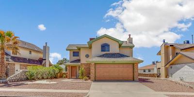 El Paso Single Family Home For Sale: 1113 Coyote Lane