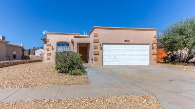 Horizon City Single Family Home For Sale: 14333 Desert Wind Drive