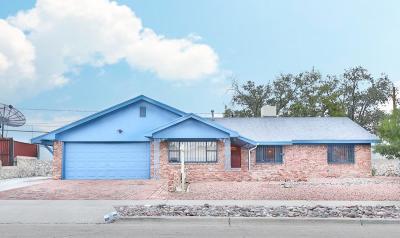 El Paso Single Family Home For Sale: 3200 Cork Drive