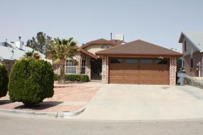El Paso Single Family Home For Sale: 1421 Plaza Fatima Court