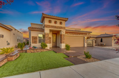 Horizon City Single Family Home For Sale: 464 Gold Crown Road