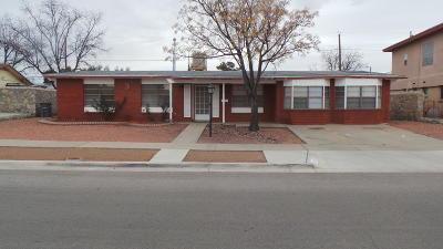 El Paso Single Family Home For Sale: 10228 Singapore Avenue