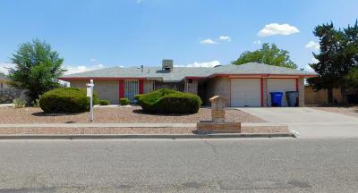 Vista Hills Single Family Home For Sale: 11336 James Grant Drive