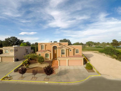 Horizon City Single Family Home For Sale: 18984 Armington Drive