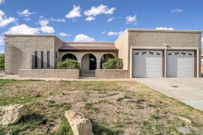 Single Family Home For Sale: 172 La Mirada Circle
