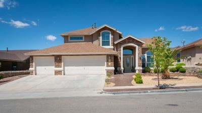 Single Family Home For Sale: 12201 Bradbury Drive
