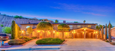 El Paso Single Family Home For Sale: 822 Amsterdam Way