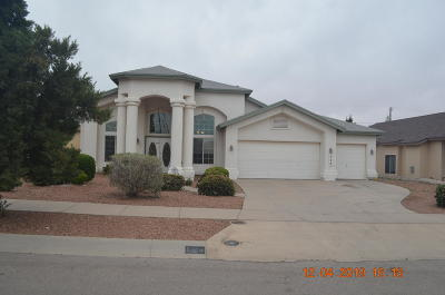 Canutillo Single Family Home For Sale: 724 La Florida Drive