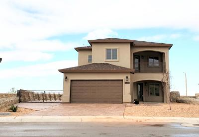 El Paso Single Family Home For Sale: 7841 Enchanted Range Drive