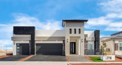 Single Family Home For Sale: 2641 Tierra Murcia Street