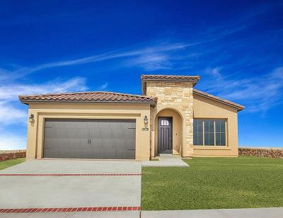 Single Family Home For Sale: 14704 Tierra Isaiah Avenue