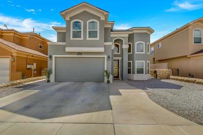 Single Family Home For Sale: 11321 Charles Maiz Lane
