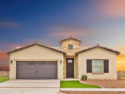 Single Family Home For Sale: 14845 Tierra Mirage Avenue