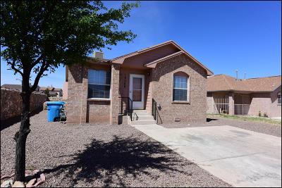 El Paso Single Family Home For Sale: 10248 Valle Koki Drive
