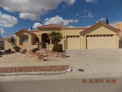 El Paso Single Family Home For Sale: 6543 Laramie Ridge Lane