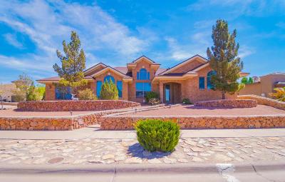 Horizon City Single Family Home For Sale: 396 Emerald Brook Drive