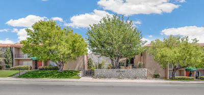 El Paso Condo/Townhouse For Sale: 252 Shadow Mountain Drive #D5