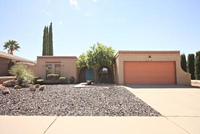 El Paso Single Family Home For Sale: 6816 Toluca Drive
