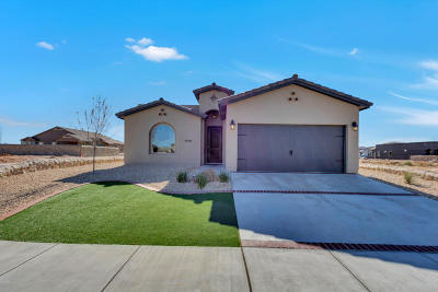 El Paso Single Family Home For Sale: 14940 Tierra Crystal Avenue