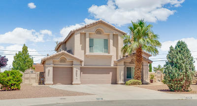 Canutillo Single Family Home For Sale: 7381 Del Sol Way