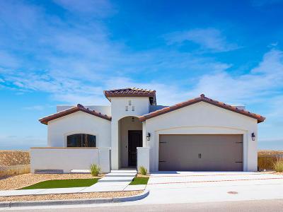 Single Family Home For Sale: 14713 Tierra Garcia Drive