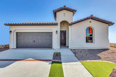 Single Family Home For Sale: 14701 Tierra Garcia Drive