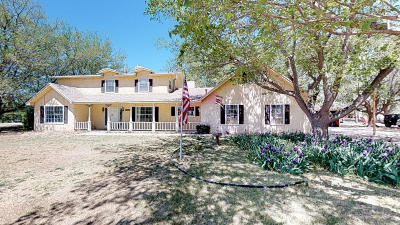 El Paso Single Family Home For Sale: 6068 S Strahan Road