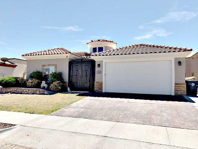 Single Family Home For Sale: 3069 Snowy Point Drive