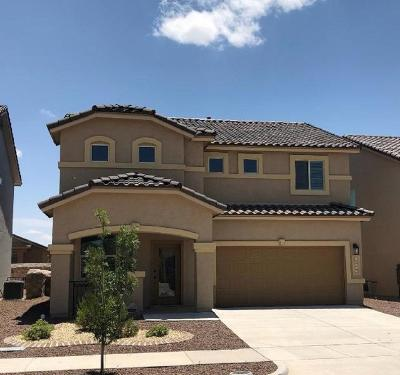 El Paso Single Family Home For Sale: 13558 Hazelwood Street