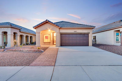 Single Family Home For Sale: 13133 Freshford Avenue