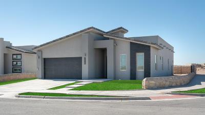 Horizon City Single Family Home For Sale: 13704 Samlesbury Avenue