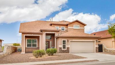 Single Family Home For Sale: 7304 Black Mesa Drive