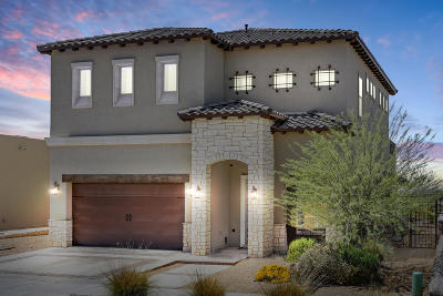 El Paso Single Family Home For Sale: 7861 Enchanted Range Drive