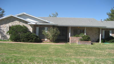 Single Family Home For Sale: 6681 Morrill Road