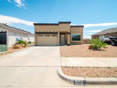 Socorro Single Family Home For Sale: 808 Villas Del Sol Road