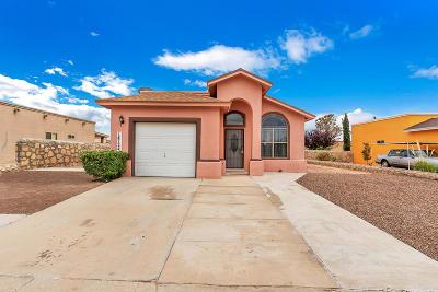 Horizon City Single Family Home For Sale: 14724 Horizon View Drive